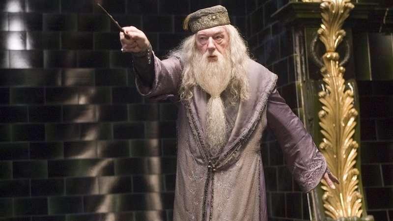 Dumbledore is gay 02