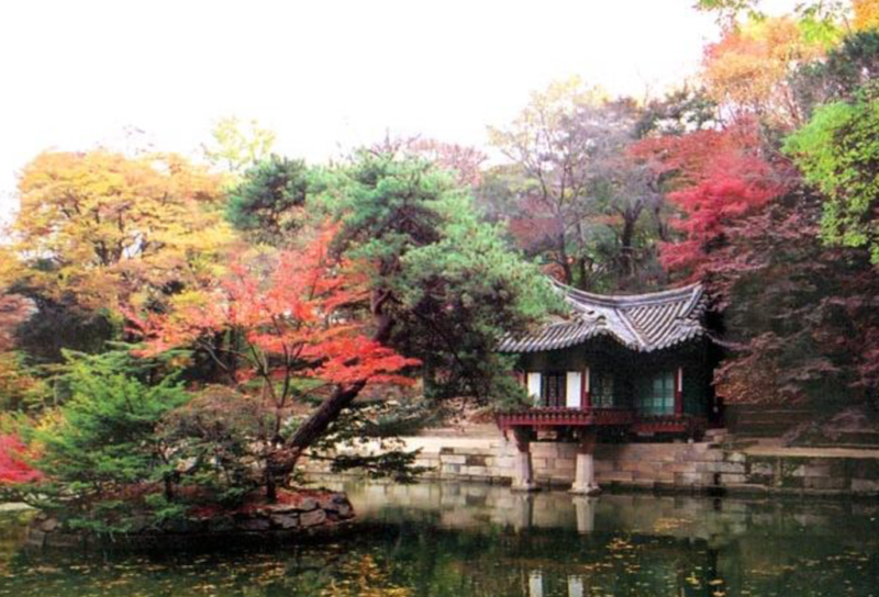 gay seoul guide changdeokgung palace