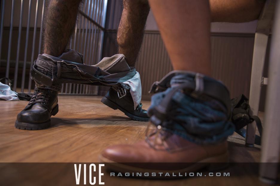 raging stallion film vice 4