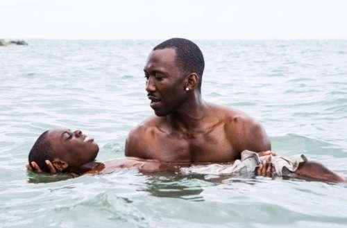 oscar-winning queer films teaser