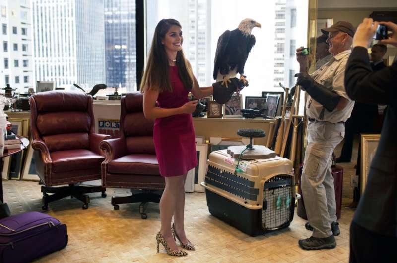 who is hope hicks 2