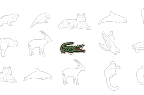 limited-edition lacoste teaser