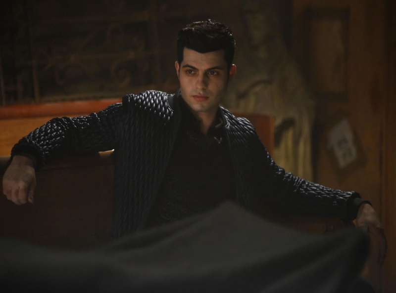 asexual tv characters shadowhunters