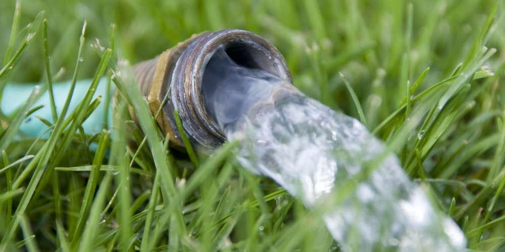 watersports urine teaser