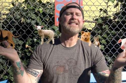 animal activist teaser