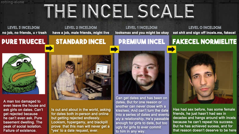 incel what are incels? scale