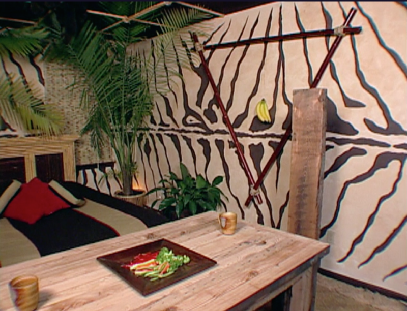 trading spaces jungle room 1