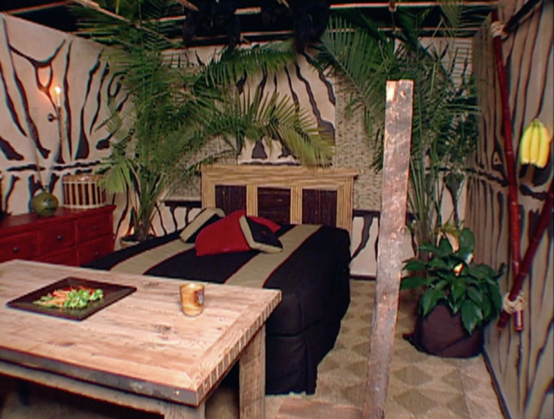Trading Spaces Jungle ROom 2