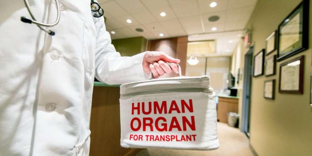 愛滋病患之間可互相捐贈器官 登記同性伴侶且擔負家庭重責之役男可服補充役