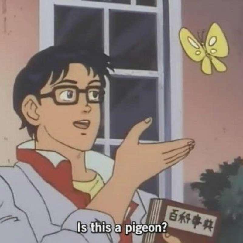 is this a pigeon original meme