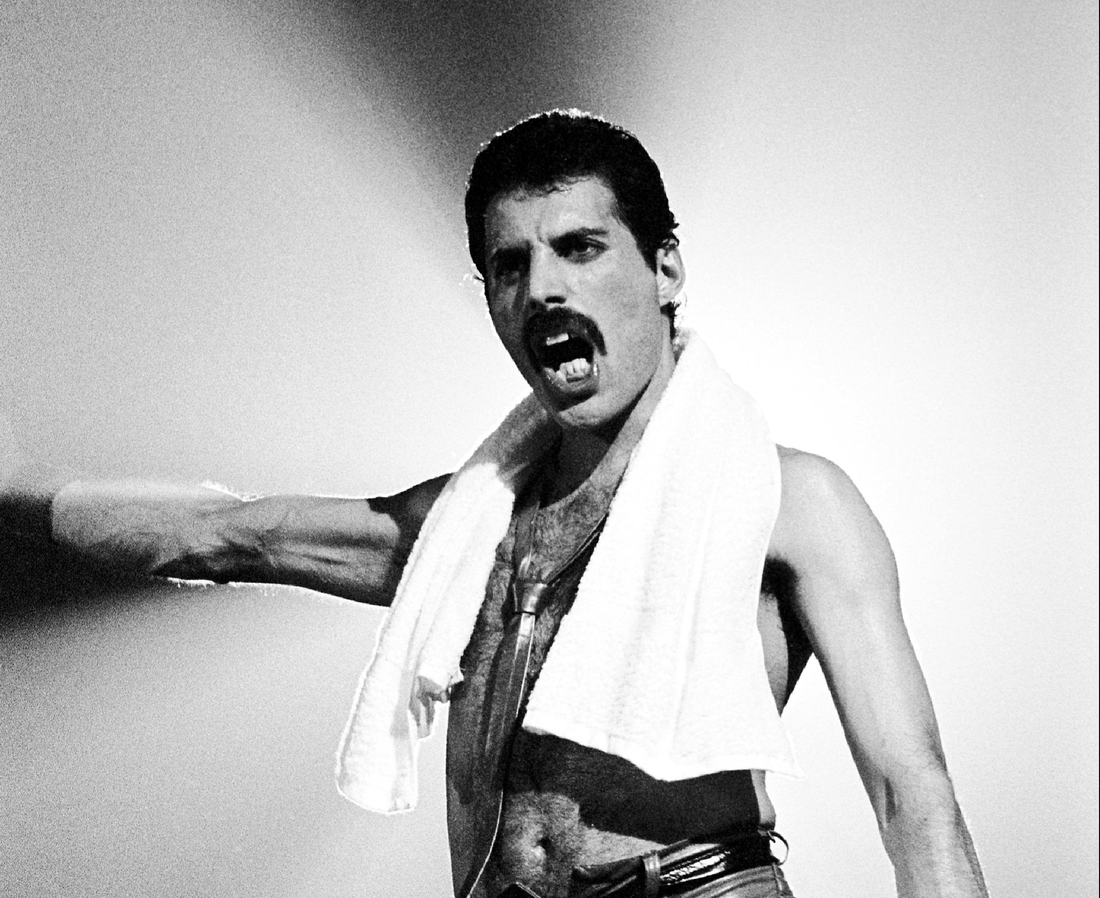 memorial day freddie mercury