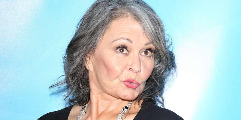 roseanne barr twitter norm macdonald offensive comedians