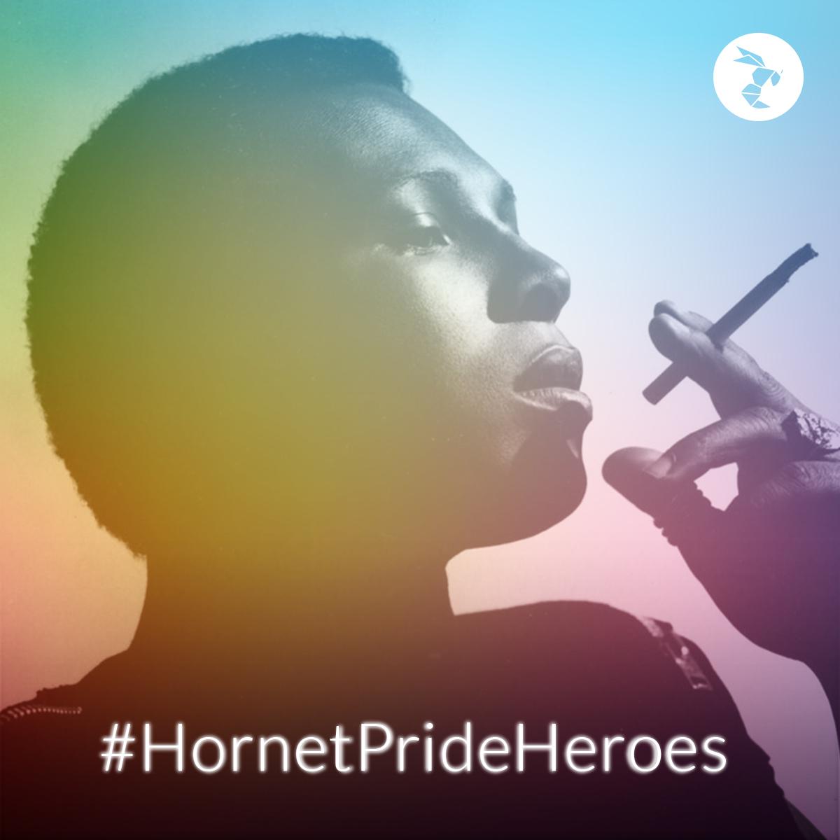 Hornet Pride Heroes sylvester