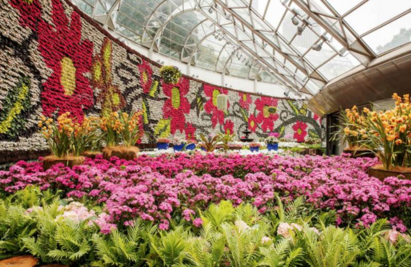 gay sydney royal botanic garden
