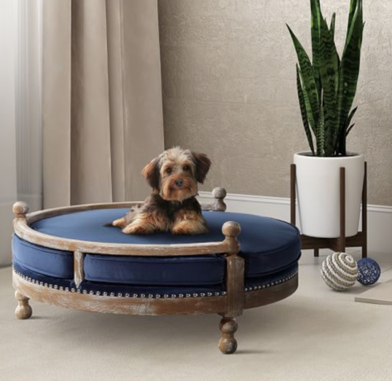 pet products designer bed