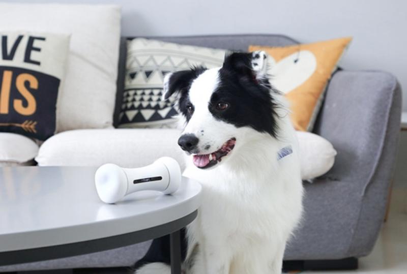 pet products tech bone