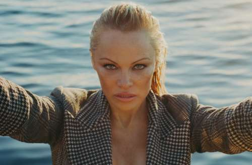 pamela anderson asexuality feat