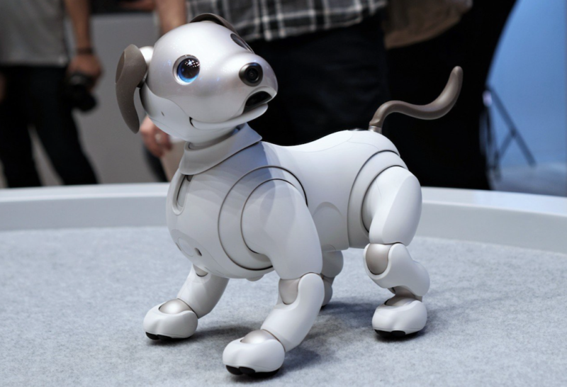 current obsessions robo pup robo-pup