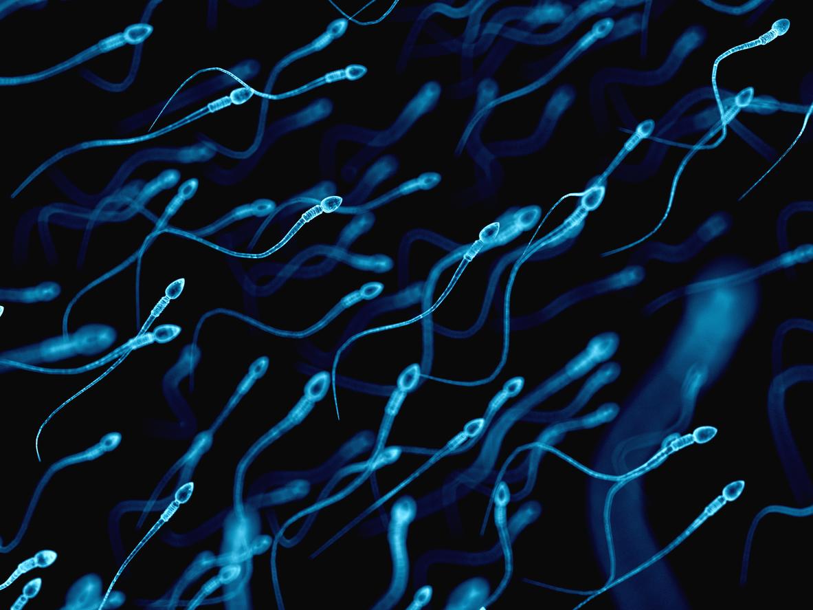 lower sperm count infertile men 2