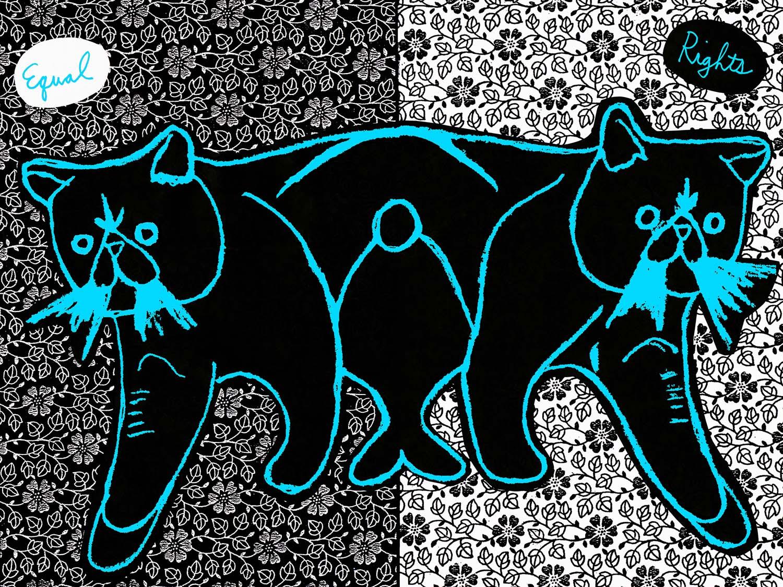 homocats art 3