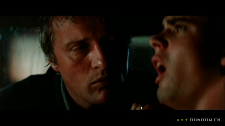 homoerotic horror the Hitcher