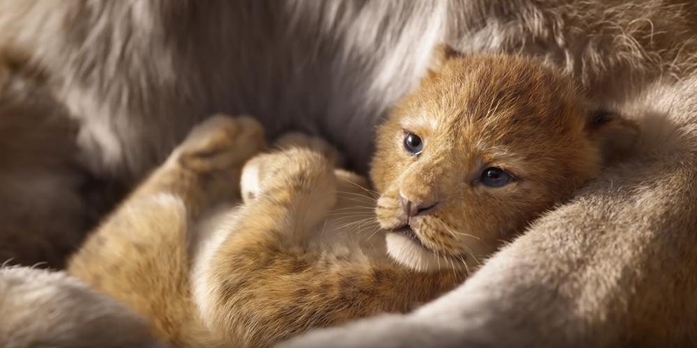 Roi Lion nouvelle version Simba