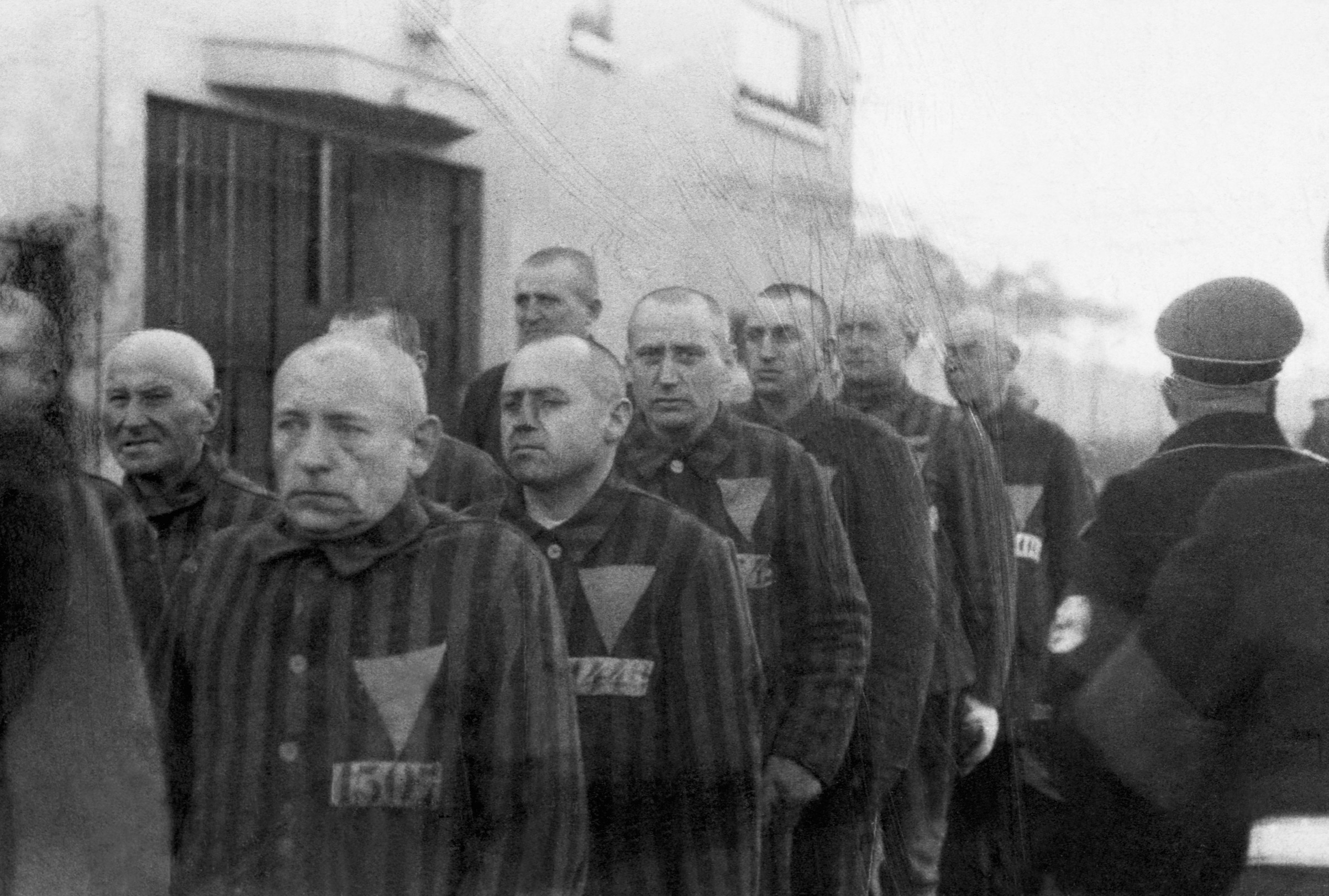 paragraph 175 concentration camps