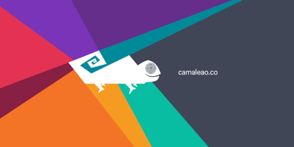 Vagas para LGBTs no mercado de trabalho: acesse a Camaleão