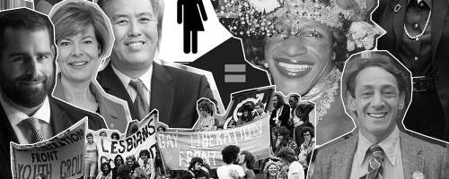 gay politics