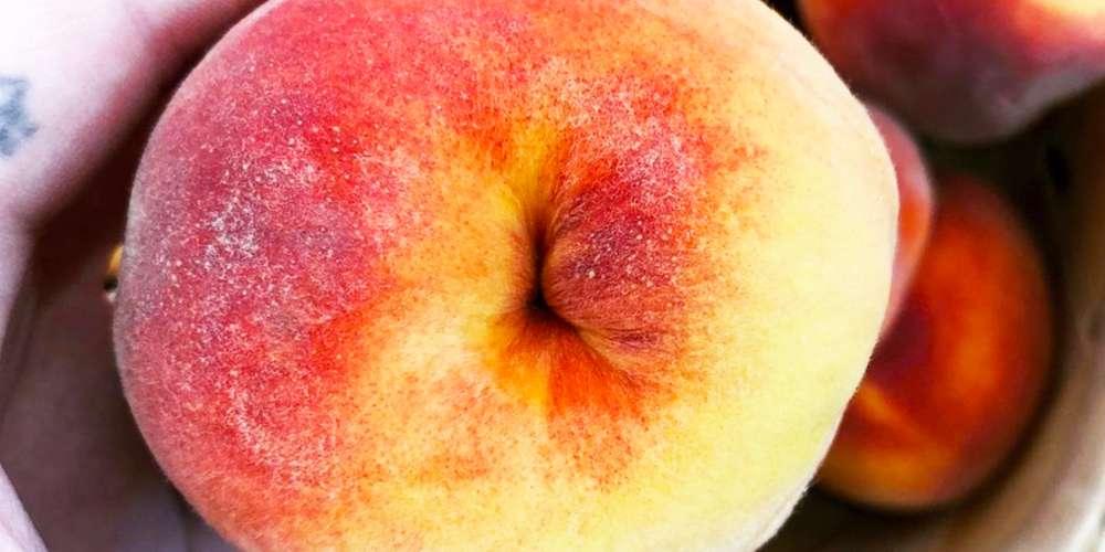 'Secret Buttholes' Es la última reveladora cuenta de Insta que deberías seguir